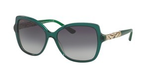 Bvlgari BV8174B 54038G GREY GRADIENTTRANSPARENT STRIPED GREEN