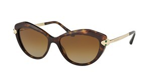 Bvlgari BV8186KB 5193T5 POLAR BROWN GRADIENTDARK HAVANA