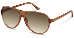 Claudia Schiffer C3001 B brown gradientbrown transparent