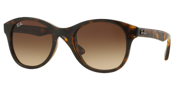 Ray-Ban RB4203 710/13 BROWN GRADIENTSHINY HAVANA