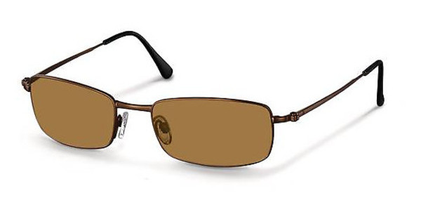 Rodenstock R1207 G brown
