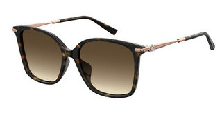Max Mara MM SHINE IVFS 086/HA