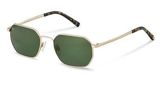 Rocco by Rodenstock RR107 B gold, black green structured