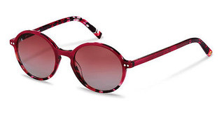 Rocco by Rodenstock RR334 F red havana